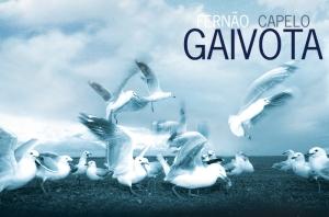 Fernao-Capelo-Gaivota-Sergio-Ricardo-Rocha